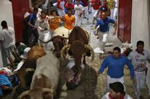 Un astado salta sobre uno de los corredores a la entrada de la Plaza de Toros durante los sanfermines