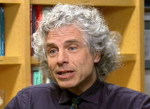 Steven Arthur Pinker, psicologo social
