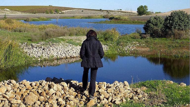 El agua del río Guadiana vuelve a llenar las Tablas de Daimiel.