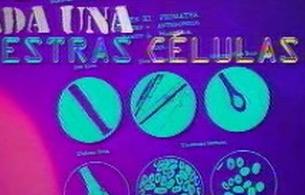 Ver v?deo  'tres14 - El ADN, nuestra huella genética'