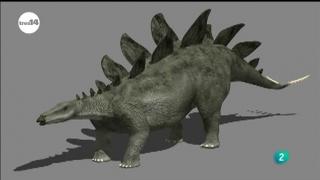 Ver vídeo  'tres14 - Dinosaurios'