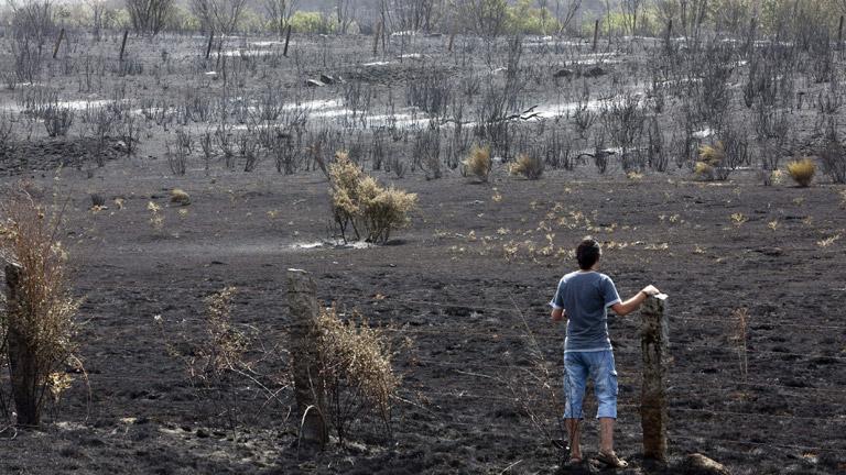 La UME trabaja para extinguir el fuego en Castrocontrigo, en León