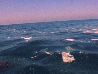 Ver v?deo  'La Unión Europea prepara un plan para mejorar el medio ambiente y el empleo de los pescadores'