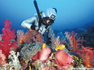 Ver vídeo  'Viajes submarinos del capitán Cousteau'