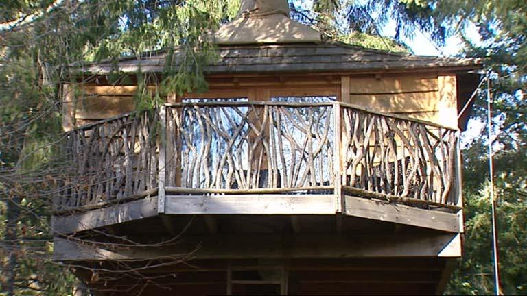 Las casas en los árboles se ponen de moda
