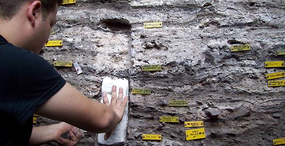 Los humanos amontaban capas de pequeños centímetros para crear sus 'colchones' vegetales