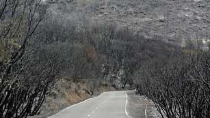Ver vídeo  'Ya está casi controlado el incendio de La Gomera'