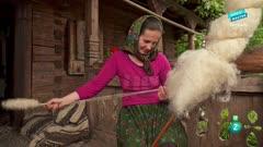 Grandes documentales: Salvada por la leona
